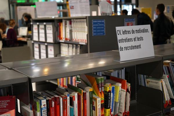 recherche emploi bibliotheque