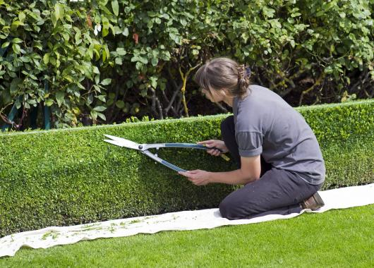 recherche emploi jardinier paysagiste